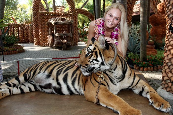 Tereza Fajksová (Czech Republic), Miss Earth 2012 and tiger. photo